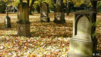 A cemetery with autumn leaves on the ground