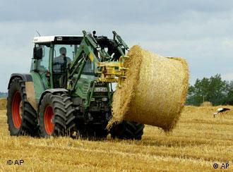 Як використати 40 мільйонів тонн соломи