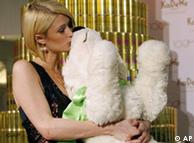 Hilton kisses stuffed polar bear Knut during a promotion event in December 2007