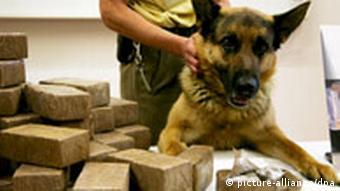 In Germany, sniffer dogs are used to detect illegal hashish - in Bhutan they'll find tobacco