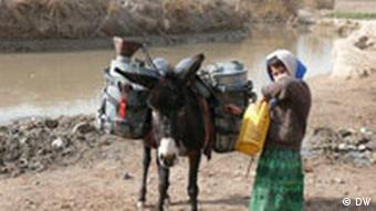 Woman and donkey in Afghanistan