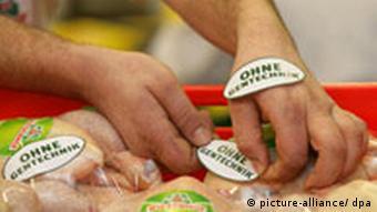 Ein Mitarbeiter des Wiesenhof-Geflügelwerkes im niedersächsischen Holte (Kreis Nienburg) klebt am 05.02.2008 Plaketten mit der Aufschrift Ohne Gentechnik auf in Folie verschweißte Brathähnchen. Dabei handelt es sich um ein Qualitätssiegel für Nahrungsmittel tierischen Ursprungs, das besagt, dass die Tiere keine gentechnisch veränderten Futtermittel erhalten haben. Verbraucher sollen gentechnikfreie Lebensmittel künftig leichter erkennen können. Dieses soll durch das vom Bundestag beschlossene Gentechnikrecht geregelt werden. Dieses Gesetz soll am 15. Februar 2008 den Bundesrat passieren. Das in Vechta ansässige Unternehmen Wiesenhof Geflügel-Kontor GmbH kontrolliert seit Mitte der Neunziger Jahre die kompletten Produktionstufen für sein Hähnchenfleisch. Foto: Ingo Wagner +++(c) dpa - Report+++