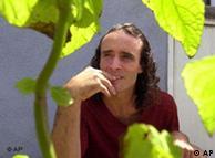 La Salvia Divinorum tiene un potente componente psicoactivo.
