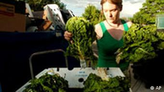 Frau holt Gemüse aus Abfallcontainer (9.6.2008/AP)