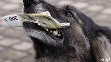 BdT Deutschland Geld Banknote Beschädigung Geldhund