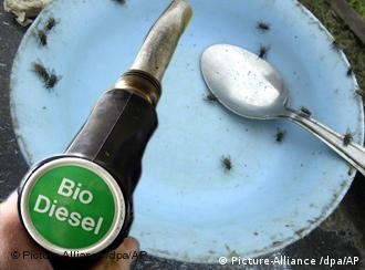 Symbolic picture of a gas pump labelled 'Biodiesel' and an empty food dish
