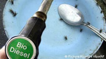 Symbolbild Biosprit und Nahrungsmittelknappheit, Quelle: dpa