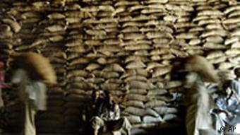 Kashmiri workers carry sacks of rice to a storage facility