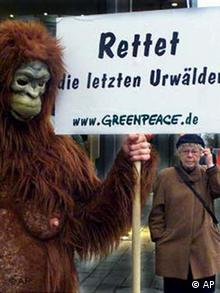 Greenpeace Demonstration in Düsseldorf