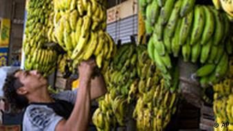 A man sells bananas at the central food market in Villa Nueva, Guatemala, Tuesday, April 29, 2008. According to the U.N. World Food Program, WFP, due to the rising prices of petroleum, the cost of basic food products in Guatemala have shot up 15 percent.(AP Photo/Moises Castillo)