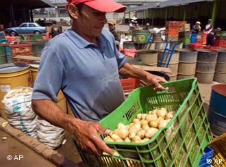 Die Lebensmittelpreise sind in den letzen Jahren rapide angestiegen (Foto: ap)