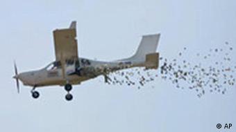 BdT Geldregen aus Flugzeug