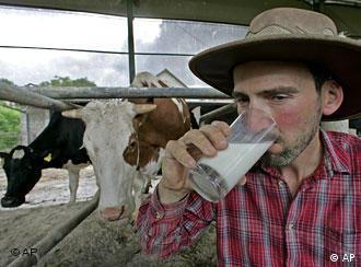 Der Milchviehhalter Klaus Gerst trinkt am Dienstag, 3. Juni 2008 im bayerischen Erding seine Milch selbst. Viele Milcherzeuger halten noch immer einen Lieferstopp an die Molkereien ein und fordern einen Mindestpreis von 43 Cent pro Liter fuer ihre Milch.(AP Photo/Diether Endlicher) Bavarian dairy farmer Klaus Gerst takes a sip of milk on his farm in Erding, southern Germany, Tuesday, June 3, 2008. The farmers demand more money for their milk and have stopped delivering to the dairies.(AP Photo/Diether Endlicher)