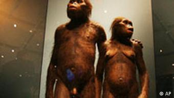 A display of two hominids who's footprints were found in Tanzania