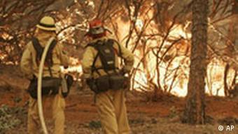 Feuerwehrleute (Quelle: AP)