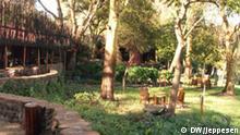 Amboseli Serena Lodge, Kenia