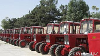Шеренга тракторов МТЗ