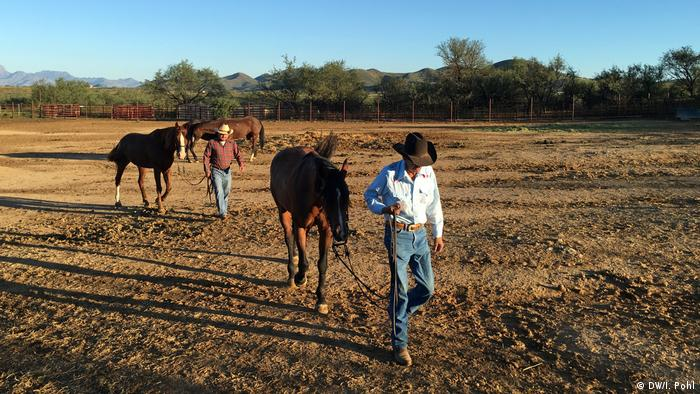 USA Reportage aus Arizona Cowboys auf der Chilton Farm (DW/I. Pohl)