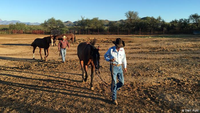 Kauboji u Arizoni