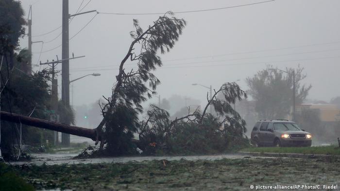 USA Hurrikan Matthew in Florida (picture-alliance/AP-Photo/C. Riedel)