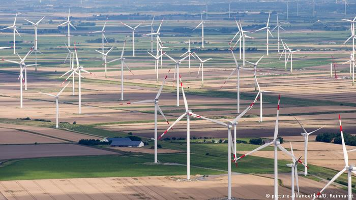 German wind farm (picture-alliance/dpa/D. Reinhardt)