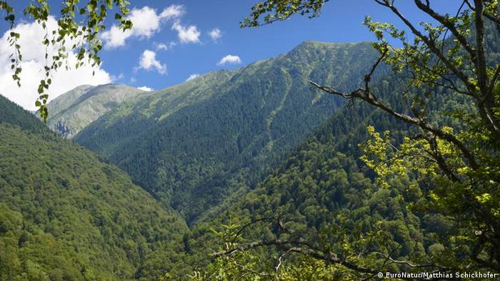 Daerah Pegunungan Fagaras, Rumania