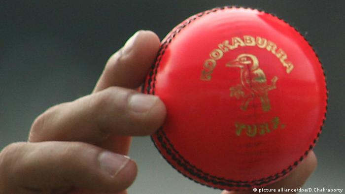 Pinker Cricket Ball Garden Eden Kalkutta Indien (picture alliance/dpa/D.Chakraborty)