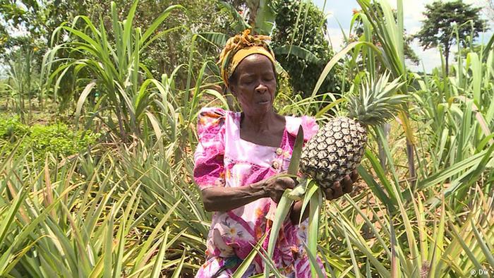 Uganda Bio-Landbau
