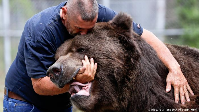 Jim Kowalczik und Jimbo Bear Nuzzler Kodiak Bär (picture-alliance/AP Photo/M. Groll)