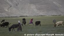 Afghanistan Landwirtschaft in der Provinz Badakhshan