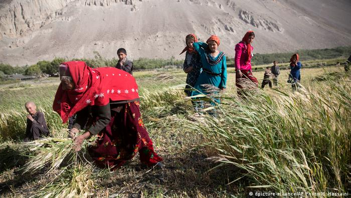 Afghanistan Landwirtschaft in der Provinz Badakhshan (dpicture-alliance/AP Photo/M. Hossaini)