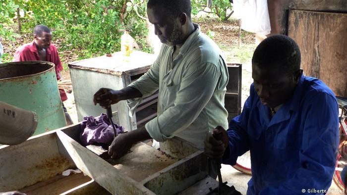 Cashew-Kooperative in Guinea-Bissau (Gilberto Fontes)