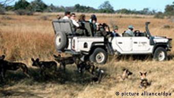 A vehicle full of people on an African safari