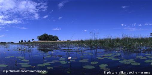 Botswana: Delta des Okavango - freies Format