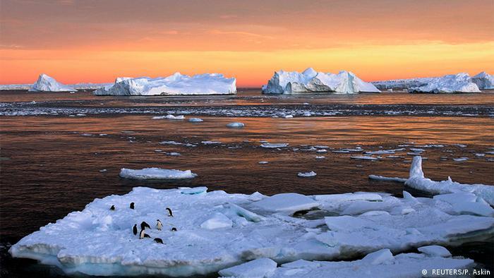 Umwelt Antarktis Meerespark ist geplannt ( REUTERS/P. Askin)