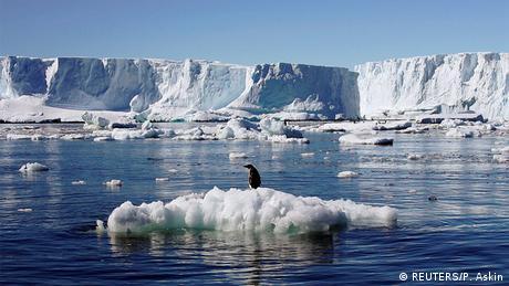 Umwelt Antarktis Meerespark ist geplannt (REUTERS/P. Askin)