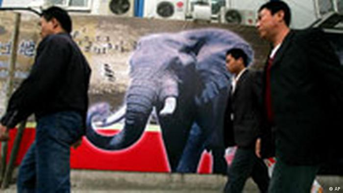 Three men walk past a poster showing an elephant