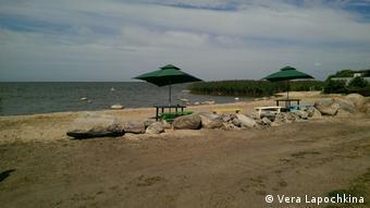 Зона отдыха на берегу Куршского залива в поселке Заливино