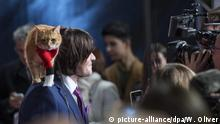 epa05616619 British writer and musician James Bowen and his cat Bob arrive for the world premiere of 'A Street Cat Named Bob' in Curzon Mayfair, Central London, Britain, 03 November 2016. The movie is due to be released in the UK on 04 November. EPA/WILL OLIVER |
