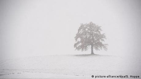 Winter snow in Bavaria (picture-alliance/dpa/S. Hoppe)