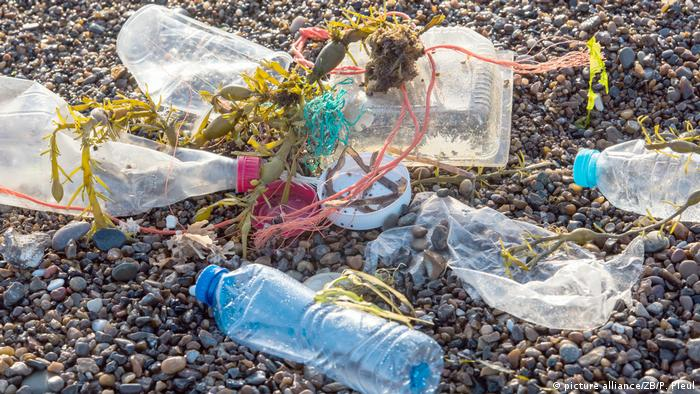 Plastic waste on the beach in Denmark (picture alliance/ZB/P. Pleul)
