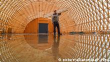 Deutschland BdT Rohbau einer Produktionshalle aus Fichtenholz