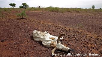 Effets de sécheresse au Mali.