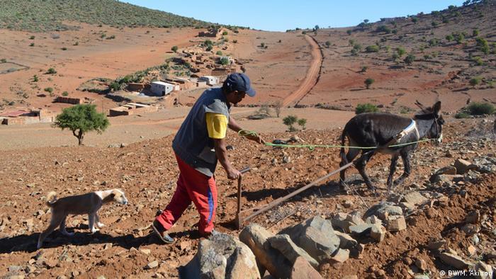 Umweltprojekt-Trinkwasser aus Nebel in Marokko (DW/M. Akinou)