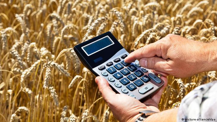 farmer calculating costs (picture-alliance/dpa)