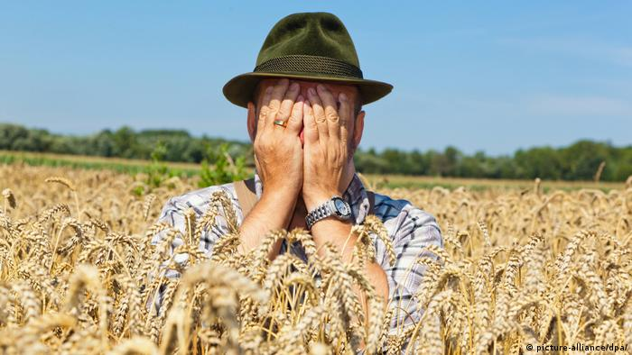 Farmer in a field of wheat (picture-alliance/dpa/)