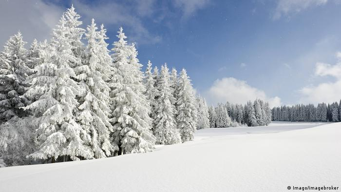 Діти з нетерпінням чекають не лише на різдвяні подарунки. Чим менше часу лишається до Різдва, тим гостріше постає питання - чи буде свято сніжним? Уже з першими сніжинками діти висипають навіть на найменші пагорби, щоб з'їхати на санчатах. Адже сніг у Німеччині нині - гість вередливий: надовго може й не затриматися.