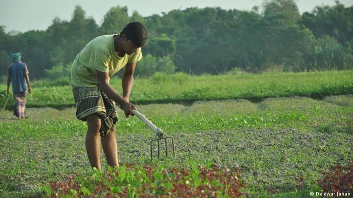 Bangladesch Biologische Landwirtschaft (Delowar Jahan)