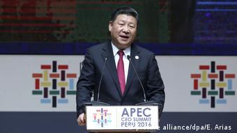 President Xi Jinping speaks during the APEC CEO Summit