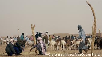 Niger Stadt Agadez - Viehmarkt der Tuareg